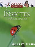 Les insectes et les arachnides