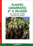 Plantes grimpantes et à palisser : les meilleures variétés, comment les cultiver