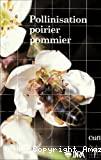 Pollinisation poirier pommier