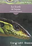 Les lézards de Guyane