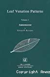 Leaf venation patterns. Volume 1 : Annonaceae