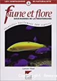 Faune et flore sous-marine de la Méditerranée