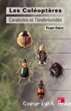 Les coléoptères carabidés et ténébrionidés