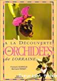 A la découverte des orchidées de Lorraine