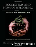 Multiscale Assessments