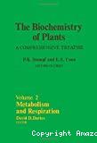 Metabolism and respiration
