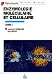 Enzymologie moléculaire et cellulaire