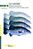 Le cernier (polyprion americanus)