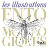 Les illustrations entomologiques