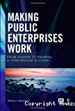 Making public enterprises work