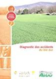 Diagnostic des accidents du blé dur