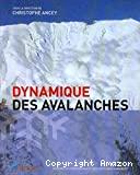 Dynamique des avalanches.
