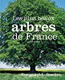 Les plus beaux arbres de France