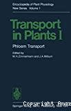 Phloem transport