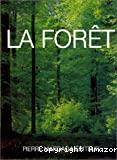 Le grand livre de la forêt wallonne.