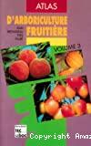 Pêcher, prunier, cerisier, abricotier, amandier