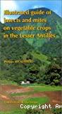 Guide de reconnaissance des insectes et des acariens des cultures maraîchères des petites Antilles