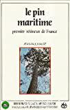Le pin maritime