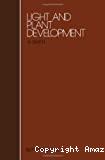 Light and development