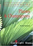Plantes et champignons