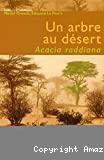Un arbre au désert, Acacia raddiana