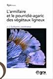 L' armillaire et le pourridié-agaric des végétaux ligneux
