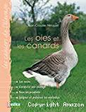 Les oies et les canards