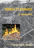 Energie et biomasse : la densification