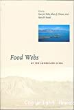 Food webs at the landscape level