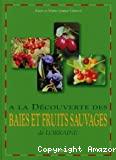 A la découverte des baies et fruits sauvages de Lorraine.